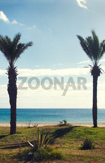 Tunisia (160).jpg