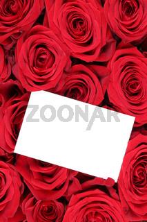 Rosen Blumen zum Valentinstag oder Muttertag mit leerer Karte mit Textfreiraum
