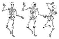 Skelette-.eps