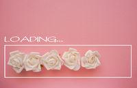 White roses loading bar on pink