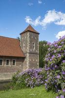 Rhododendronblüte im Park von Burg Hülshoff
