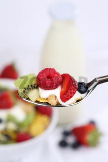 Früchte Müsli auf Löffel mit Joghurt und Milch