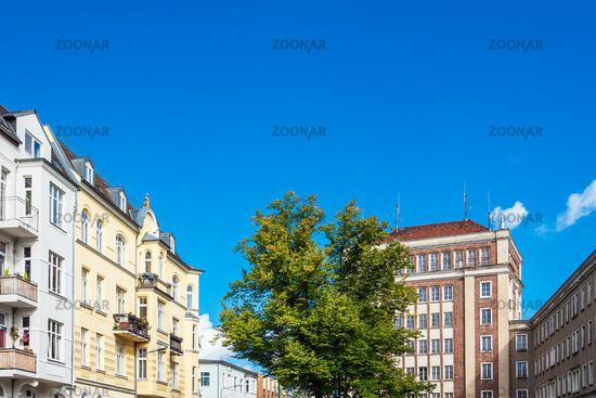 Gebäude und Baum in der Blücherstraße in der Hansestadt Rostock