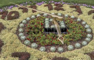 Greizer Park - Detail einer Blumenuhr