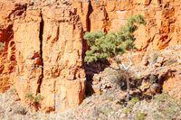 Ormiston Gorge in Northern Territory Australia