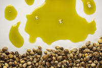 dry hemp seeds and oil abstract