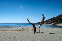 Strand von Prevelli - Kreta