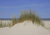 Sanddüne auf Baltrum
