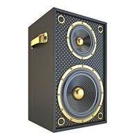 Single golden black speaker 3D