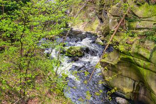 Landschaft im Bodetal mit Bäumen und Felsen im Harz