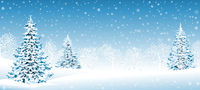 Snowy forest Christmas winter background