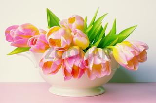 Tulpen in Vase