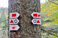 Wegweiser im Wald am Nidecker Wasserfall