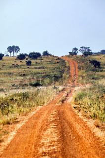 Piste im Murchison Falls Nationalpark Uganda | Sand road through Murchison Falls National Park Uganda