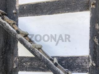 wooden chicken ladder