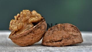 Walnuss, Juglans regia, walnut