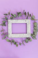 Rustic wooden frame surrounded by green leaves on purple background