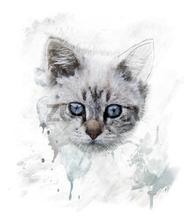 Watercolor Portrait Of Young Cat