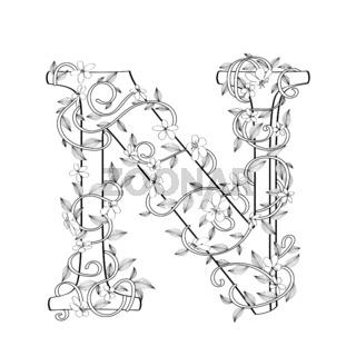 Letter N floral sketch