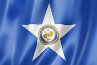 Houston city flag, Texas, USA