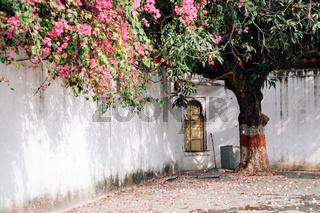 Saheliyon Ki Bari (Garden of the Maidens) in Udaipur, India