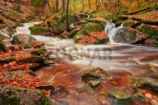 Ilsetal im Herbst