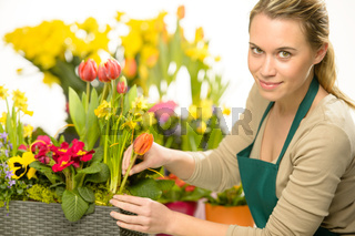 Florist arrange spring flowers colorful plants