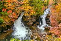 View of Ryuzu Waterfalls with the colorful foliage of autumn season forest.