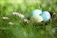 Osternest im Gras
