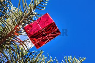 Auf den Kanarischen Insel hängen zu Weihnachten am 6. Janura bunte Päckchen in den Bäumen