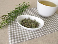 A cup of shepherds purse herbal tea