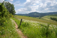 Panoramic image of the Sauerland region close to Winterberg, Germany