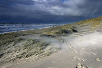 sunshine over sand dunes by North sea