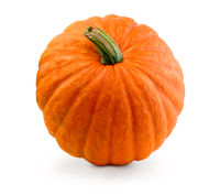 Fresh pumpkin isolated