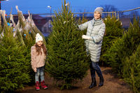 happy family choosing christmas tree at market