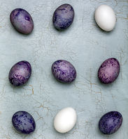 Colored Easter eggs and white eggs.