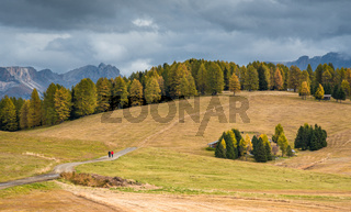 Mountain Landscape at valley of Alpe di siusi in the  Dolomites area at South Tyrol in Italy