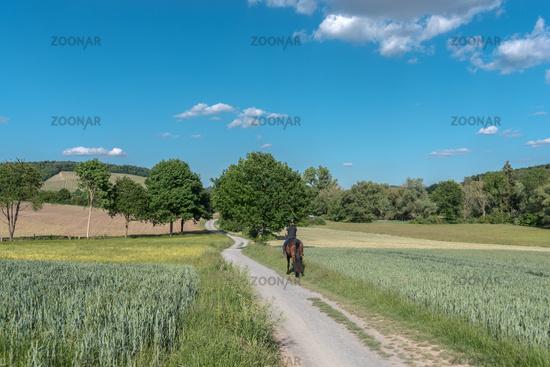 Frau mit Pferd bei Maulbronn