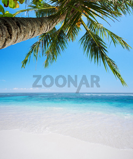 Peaceful tropical beach in sunny day