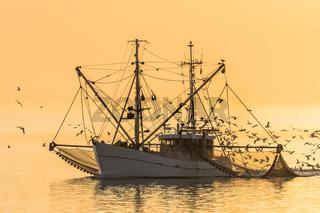 Fischkutter auf der Nordsee bei Sonnenuntergang, Büsum, Schleswig-Holstein, Deutschland