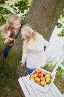 Kinder spielen im Herbst bei Apfelernte