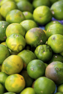 Lemons on Bohol Island