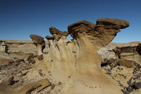 Strange Rock Formation in Bisti Badlands Valley of Dreams New Mexico