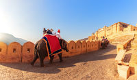 Amber Fort panorama: tourists on the elephants, Jaipur, India