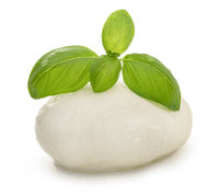 Mozzarella and basil isolated