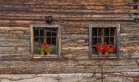 rustic windows in wooden back