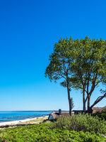 Strand an der Ostsee bei Ahrenshoop