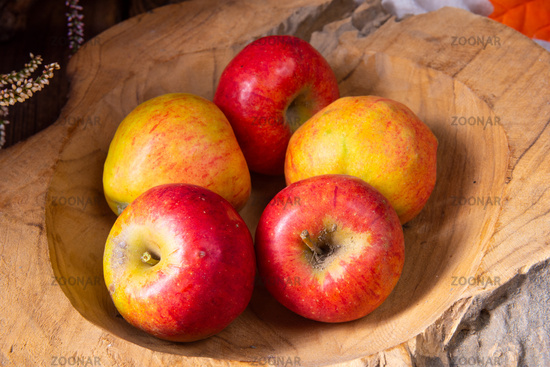autumn is the time to harvest apples