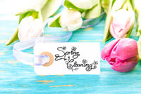 Label With Calligraphy Spring Cleaning, Tulip Blossom