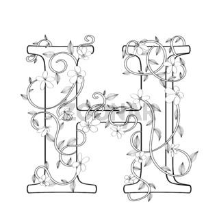 Letter H floral sketch